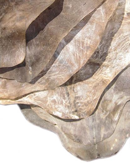 rasiertes Ziegenfell Guinea