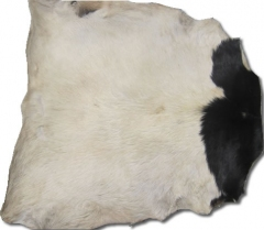 Goat skin Guinea with hair white / white spotted